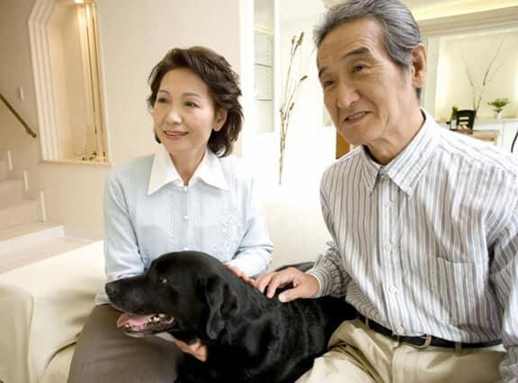 Senior Couple With Black Lab Dog