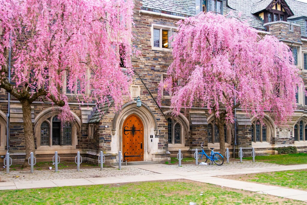 Home Care in Princeton NJ - View of Princeton University