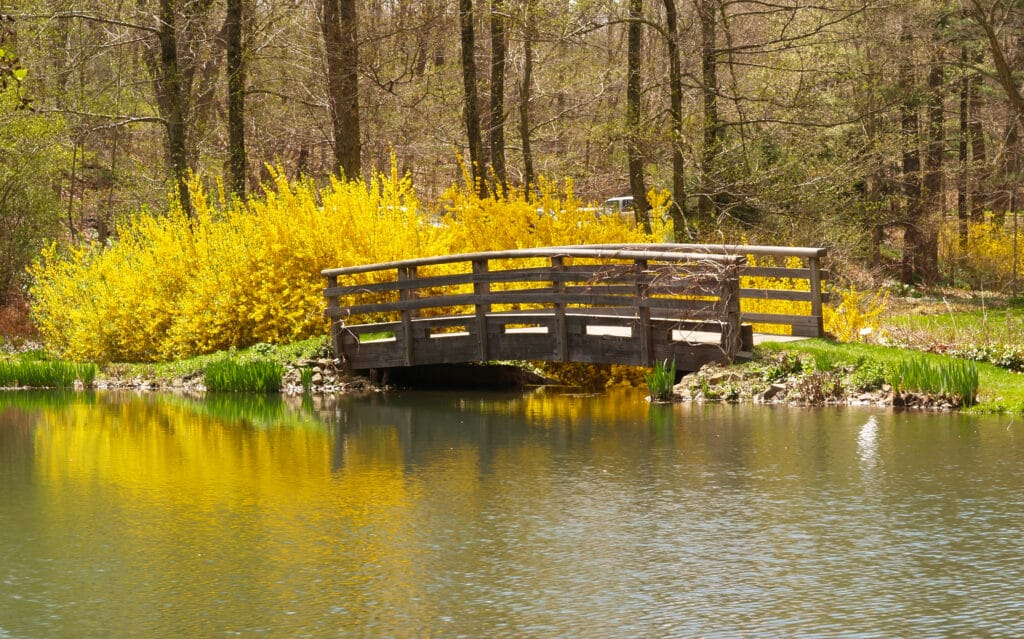 Home Care in New Jersey About New Jersey, The Buck Garden in New Jersey
